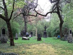 Nordfriedhof_Wiese_2